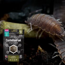 Arcadia EarthPro Custodian Fuel 80g custodian insect and gutloading food
