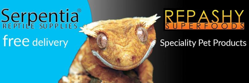 repashy superfoods crested gecko food and reptile vitamins, calcium and supplements