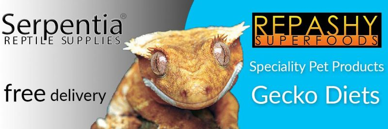 repashy superfoods gecko diets complete foods
