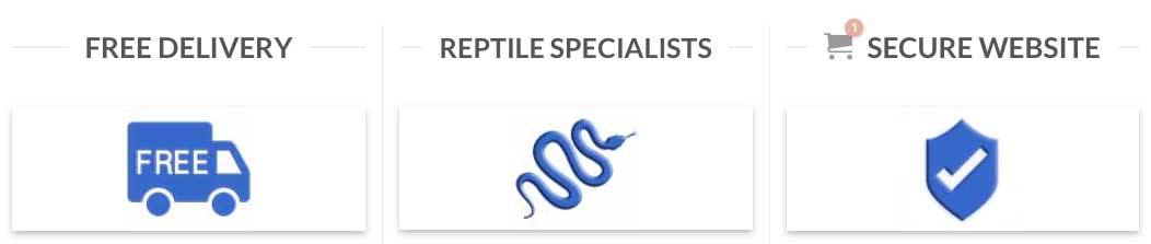 serpentia reptile supplies free delivery reptile specialists secure website
