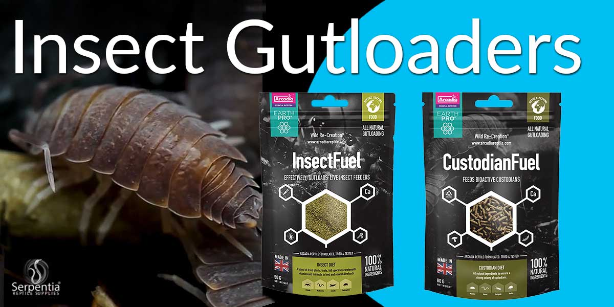 Arcadia EarthPro Insect and Custodian Food Gut loaders food for crickets, locusts, springtails