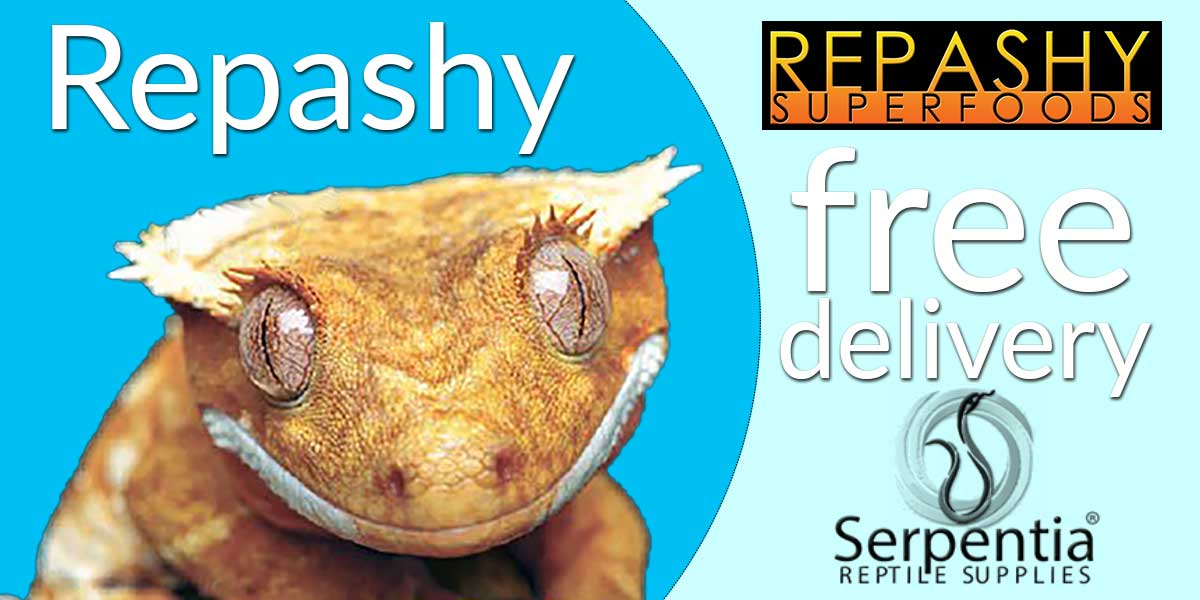 Repashy Superfoods Crested Gecko Complete Diets, Reptile Calcium and All-in-One Reptile Supplements and Reptile Vitamins for Tortoises, Bearded Dragons, Geckos, Skinks, Frogs, Turtles, Chameleons