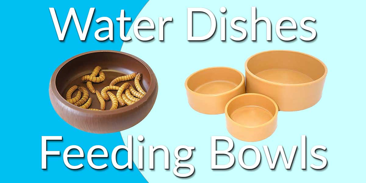 Reptile Water Dishes and Feeding Bowls
