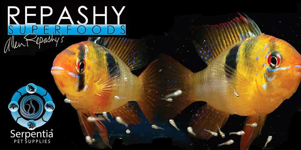 Repashy Tropical Freshwater Fish Foods