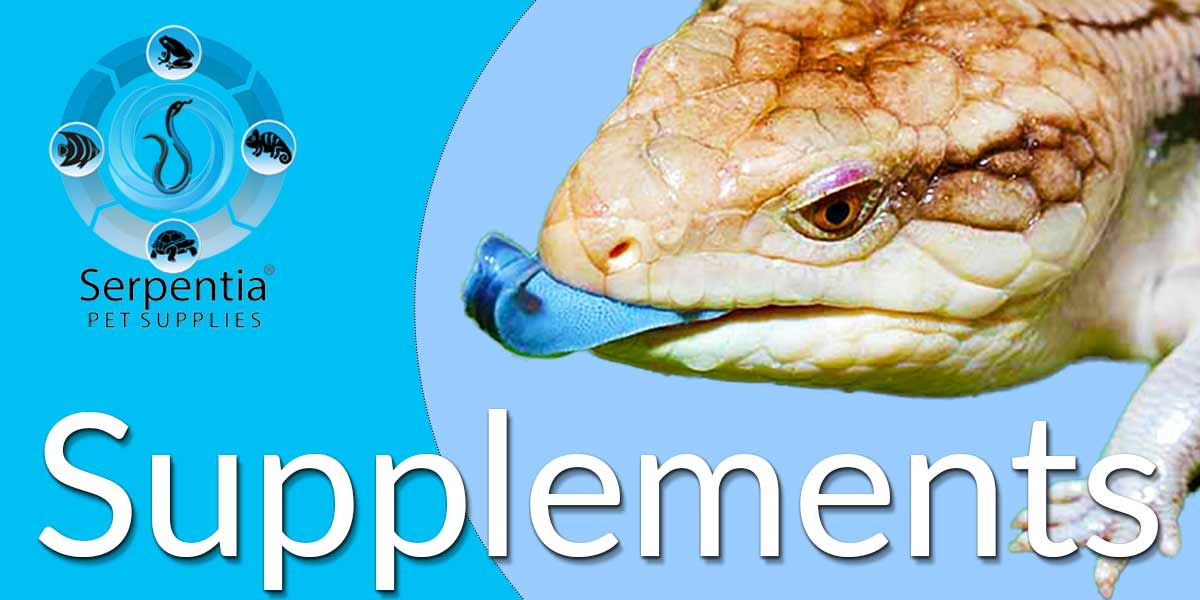 Vitamin Supplements For Pet Reptiles and Birds